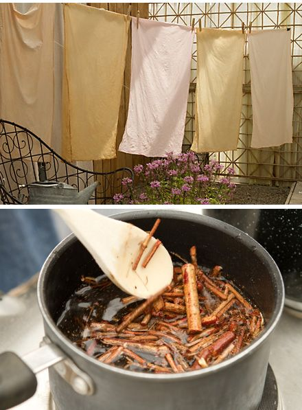 HOW TO DYE FABRICS WITH PLANTS: If you've ever wanted to add a personal touch to your linens, consider dyeing your own fabric using plants and flowers.
