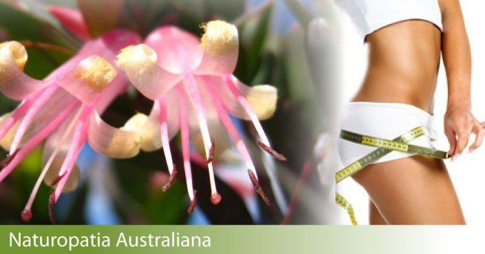 Dimagrire con i Fiori australiani