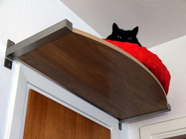 O espacinho que seu gato sempre sonhou!