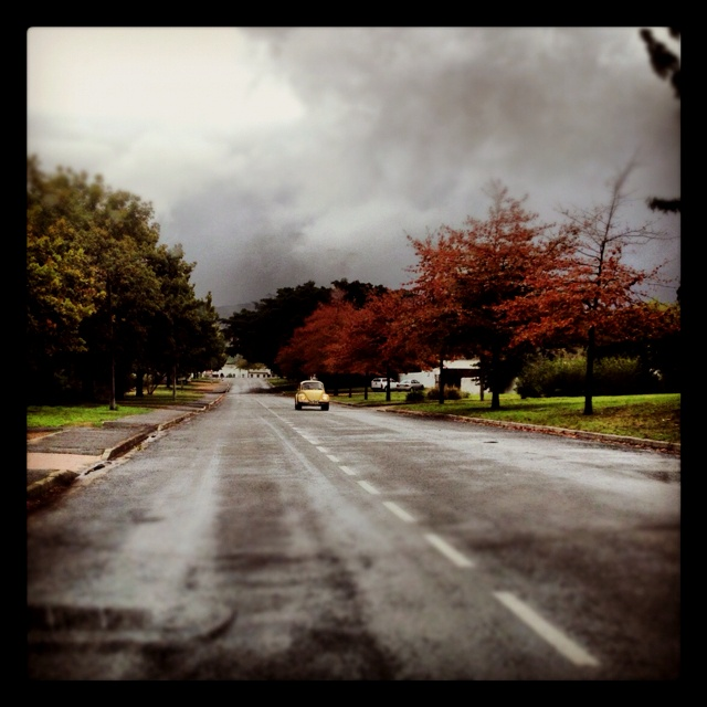 Stellenbosch was pretty today.