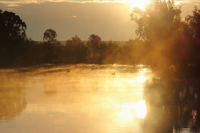 Fog on the Murray
