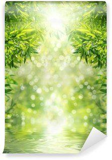 Стикер стены Дзен бамбуковый лес, солнце и вода.