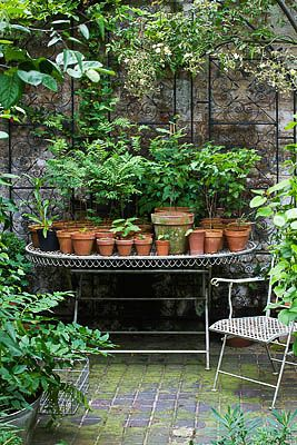 idea for arranging herbs?