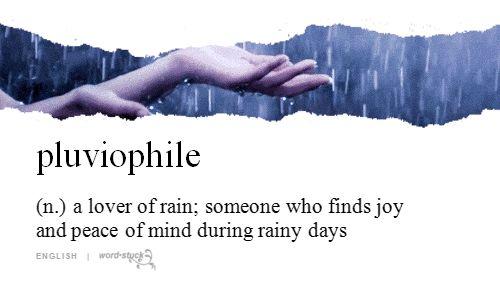 Pluviophile / iFunny :)