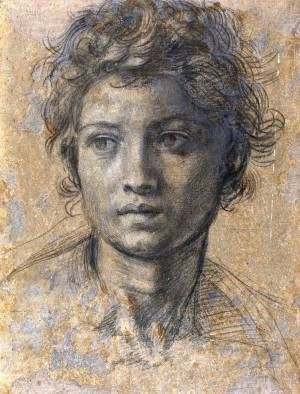 Saint John The Baptist // By Andrea Del Sarto