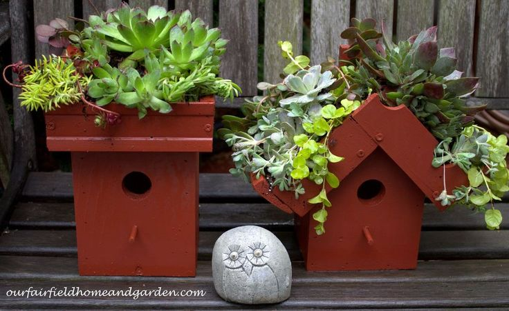 Easy DIY Green Roof Birdhouses