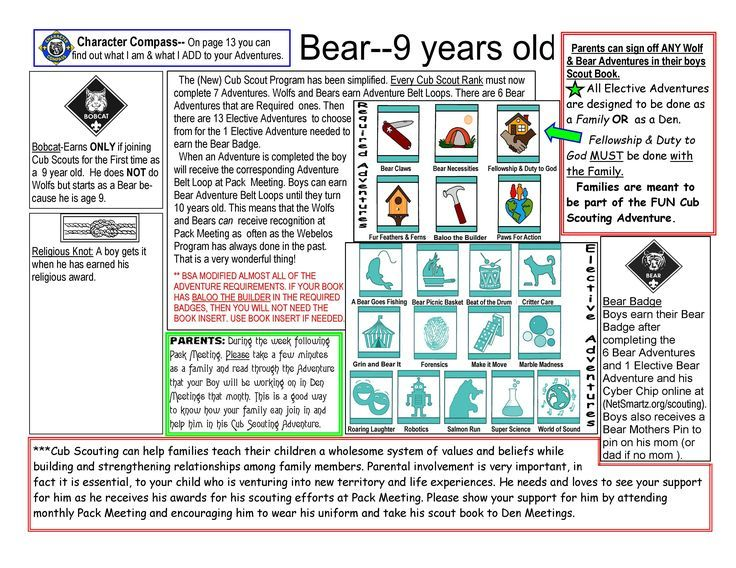 Cub Scout Bear Basics for New Bear Boys and their Families. Any Religion Religious Knot info can be inserted.