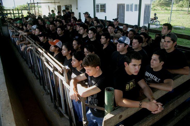 """Performance colectivo """"Capacidad de Carga"""", Zamorano, Honduras, 2009 - Fotografía de Jorge Antonio Espinosa - Curaduría Alan Nuñez"""