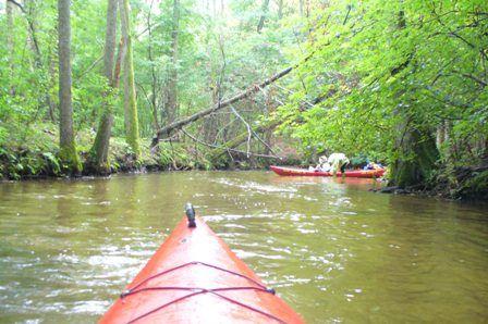 Individual kayaking and canoing at Brda river
