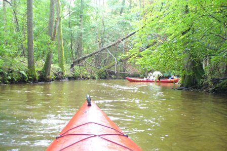 Individual kayaking and canoing at Brda river