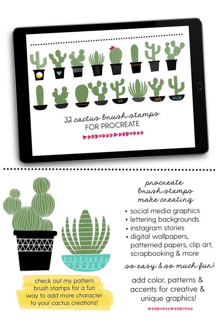 Cactus Brush Stamps for Procreate (With images