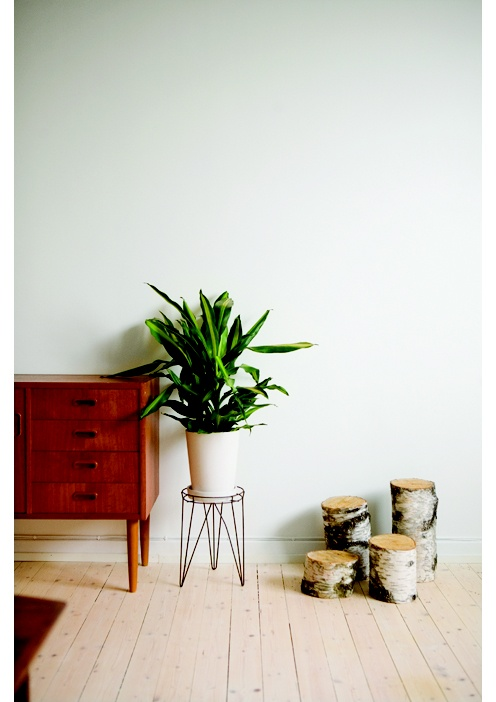 Love the plant stand