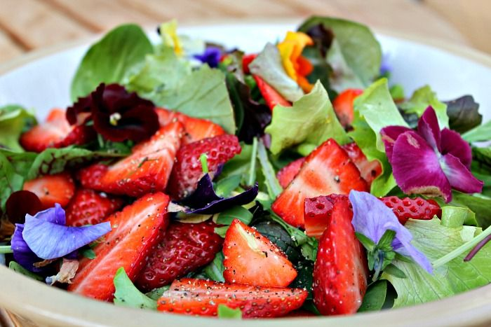 salat med jordbær og hornviol salad with strawberries and flowers