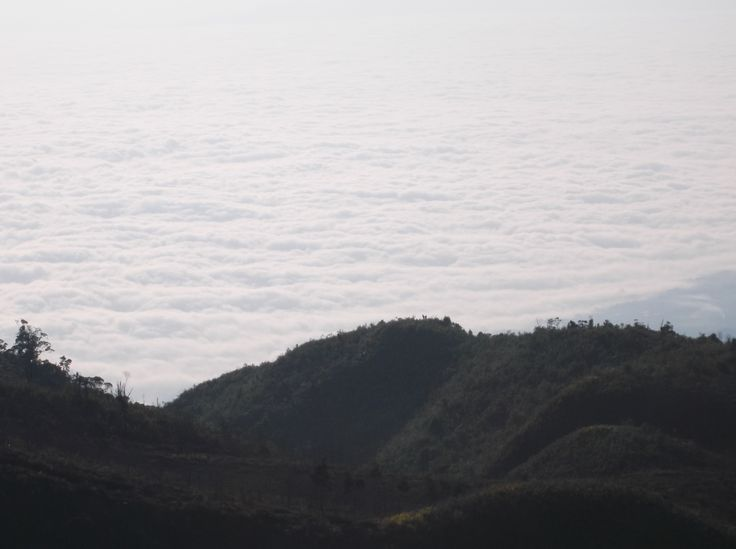 sea of clouds from prau mountain (Dieng)