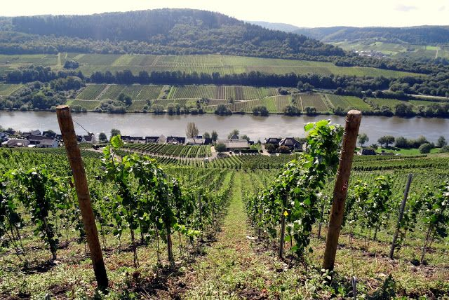 Bullay, Moselle River Valley