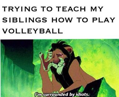 haha so true!!/ volleyball humor/ the lion king/ siblings