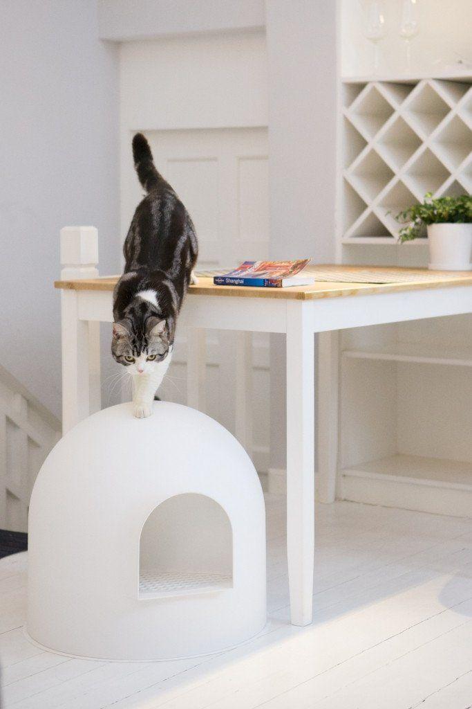 les 10 meilleures images du tableau litières design pour chats sur