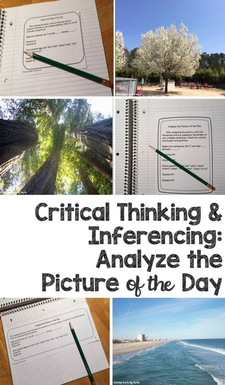 Have fun teaching critical thinking skills, inference, and reading comprehension with Analyze the Picture of the Day! Interactive notebook inserts guide students. 12 photos are included, along with free resources for others.