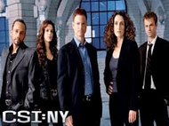 Free Streaming Video CSI: NY Season 9 Episode 15 (Full Video) CSI: NY Season 9 Episode 15 - Seth and Apep Summary: Mac and the team partner with D.B. Russell to outsmart Christine's kidnappers before they run out of time to save her life, in the second part of a two-part crossover with CSI: Crime Scene Investigation.