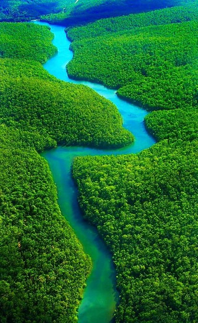 Amazônia Brasileira .