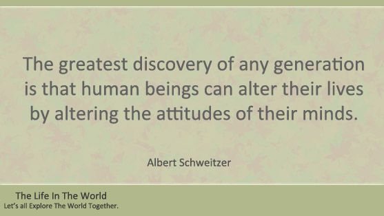 Top 10 Albert Schweitzer Quotes.