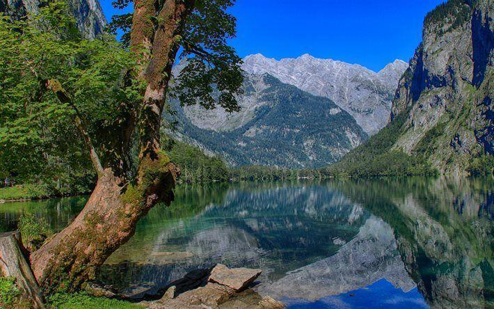 Scarica sfondi Lago Obersee, estate, montagna, Alpi di Berchtesgaden, in Baviera, Germania