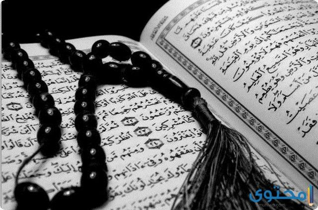 تعريف الاستخارة وأهميتها Holy Quran Quran How To Memorize Things