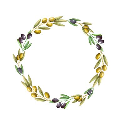 Watercolor Olive Branch Wreath Vector Image On Cizim Boyama