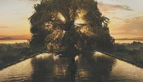 La Terra Petrosa è luogo di visioni... Dalle acque nere di un lago sorgeva un grande albero, vecchio come la terra e insieme giovane e turgido di vita. Tra le foglie lucenti splendevano fiori scarlatti a forma di coppa, e fra i petali, trasparenti come le pareti di una lampada, brillavano luci misteriose: decine, centinaia di fiammelle che si specchiavano tremule nel lago e avvolgevano il tronco di luce, posandosi come farfalle sull'enorme cupola dei rami e sulle fronde protese sull'acqua.