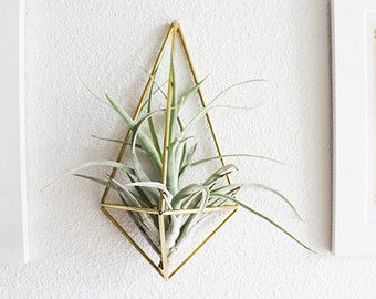 VENIA / Modern Ornament / Air Plant Holder / Himmeli by HRUSKAA