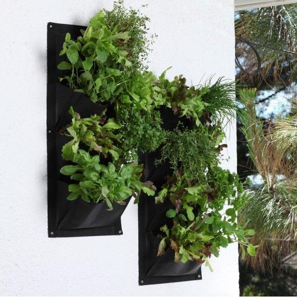 Garden Ideas 2015 Uk best 25+ outdoor pots and planters ideas on pinterest | outdoor