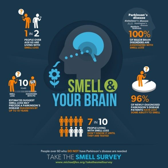 Smell & Your Brain Survey. Early detection of Parkinson's is crucial to understanding the causes of and developing better treatments for Parkinson's disease (PD). Loss of sense of smell is a common but little noticed symptom that may occur years before the onset of motor symptoms or a PD diagnosis. Its suggests that the disease may start not in the substantia nigra (the region of the brain where loss of nerve cells leads to the dopamine deficit experienced by people with PD) but in the…