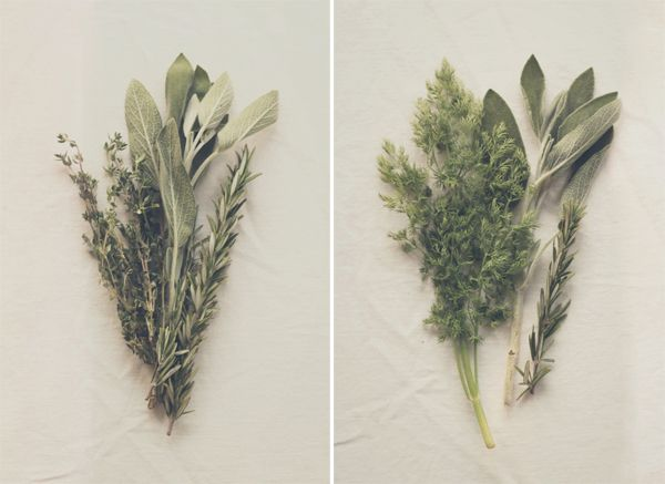 DIY Wedding Bouquet Tutorial: How To Make Herb Bouquets | The Knotty Bride™ Wedding Blog + Wedding Vendor Guide..... ....The key with herbs is mixing textures.  Since they all tend to be in the same color range, texture is what is really going to give definition to your arrangement — without varying textures, all the pretty details get lost and your bouquet may end up looking more like a bush.