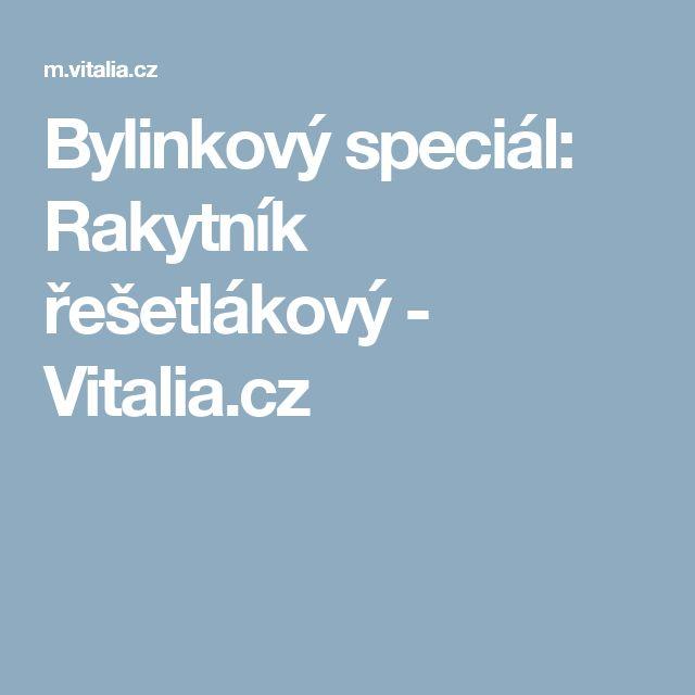 Bylinkový speciál:  Rakytník řešetlákový - Vitalia.cz