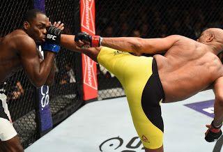 Blog Esportivo do Suíço: Anderson Silva luta com seriedade, vence Brunson e se emociona no UFC 208
