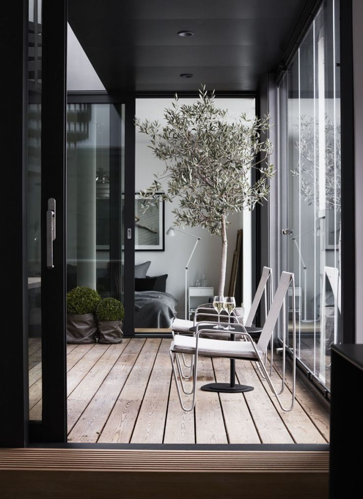 Stunning patio sun room space with black metal windows and full views out into the garden | large potted olive tree