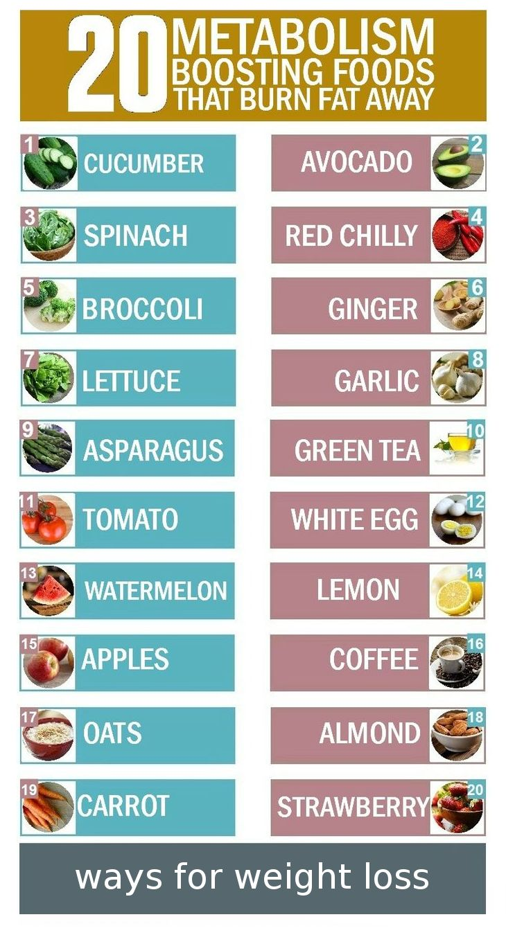omnitrition weight loss diet foods list