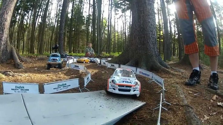 8. RC Rally Forest