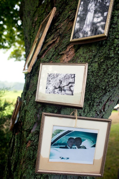 if you're having a very simple outdoor wedding, try hanging picture frames all over the trees, with pictures of the bride and groom with each other and the bridal party and family! this gives the wedding site an intimate feel!