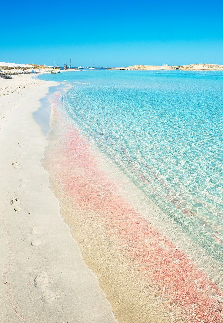 25 best ideas about pink sand beach on pinterest pink for Pink sand beaches bahamas