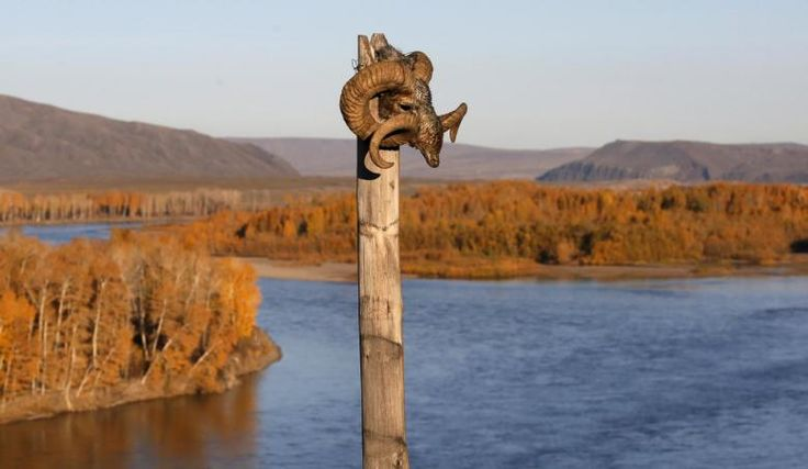 The head of a mountain ram is attached to a wooden column at the site used for shamans' rituals in the Aldyn Bulak area on the bank of the Yenisei River during sunset outside the village of Elegest, October 7, 2015. REUTERS/Ilya Naymushin