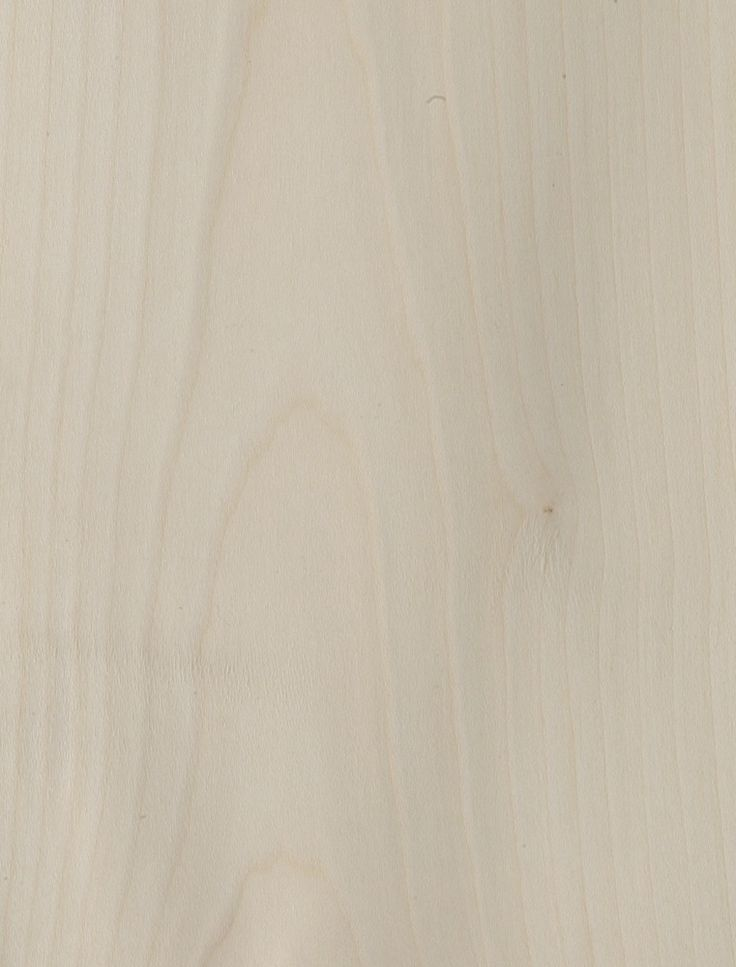 Ahorn Amerikansk - hårdttræ. Copyright: Keflico A/S.