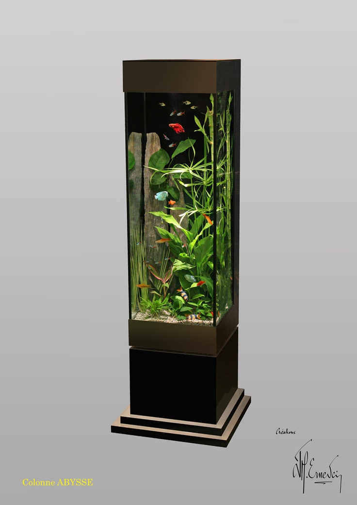 oltre 25 fantastiche idee su aquarium colonne su pinterest paludarium acquari e cuve aquarium. Black Bedroom Furniture Sets. Home Design Ideas