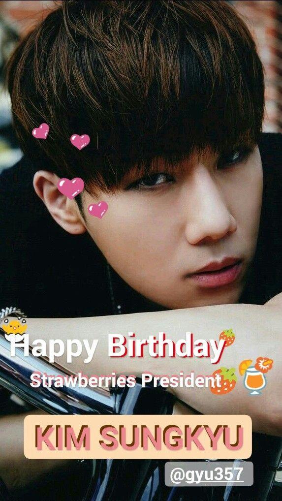 Kim Sungkyu, Infinite Birthday