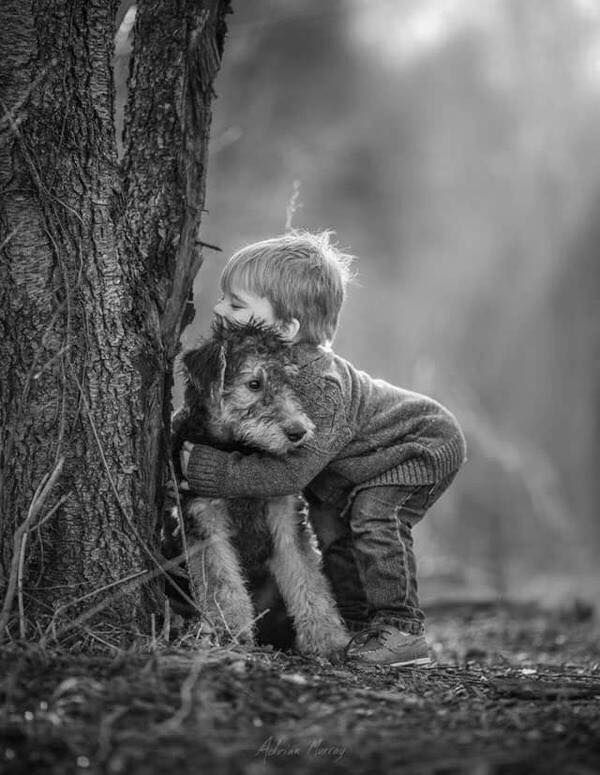 by Adrian Murray [hug]
