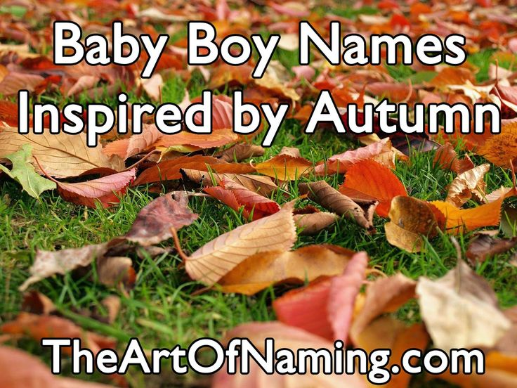The Art of Naming: Autumn Names for Baby Boys