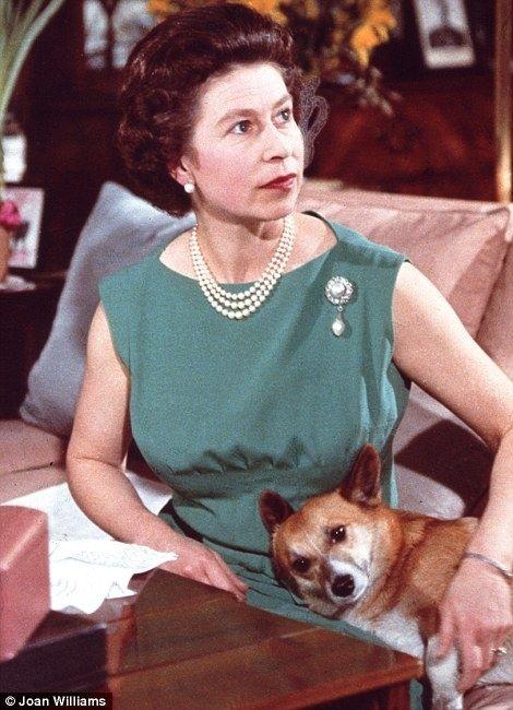 Queen Elizabeth and corgi