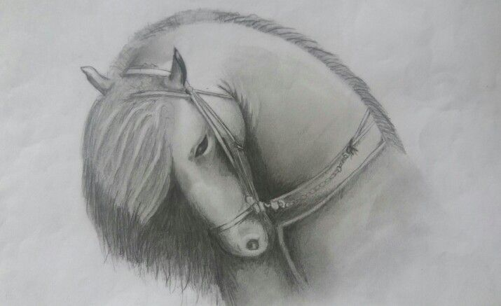 Some say horses have the soul of the rider #horse #drawing
