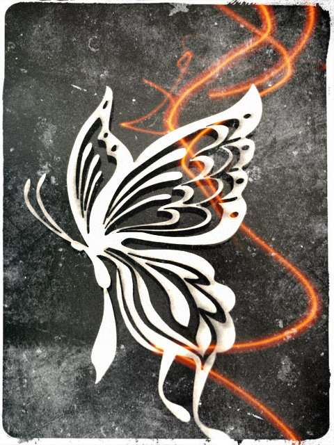 Mariposas caladas