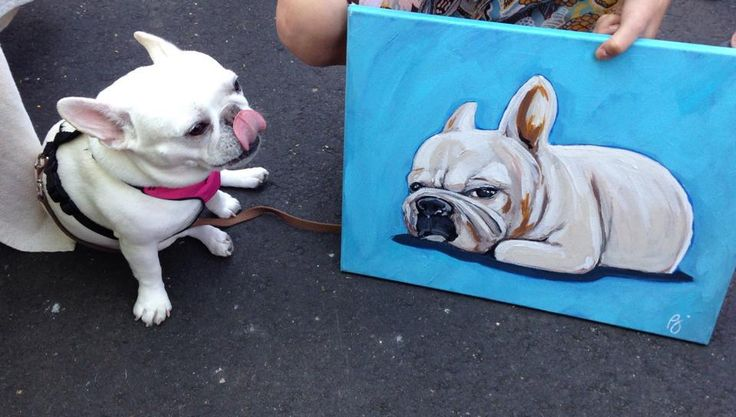 Custom dog painting on high-quality canvas with acrylic paint, taken from a picture. Use code Pin30 at checkout for $30 off yours! Zawi Studio | San Diego Pet Artist | Brett Alazzawi | portfolio